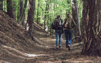 Reforest our Hearts – Att hela vår relation med Jorden