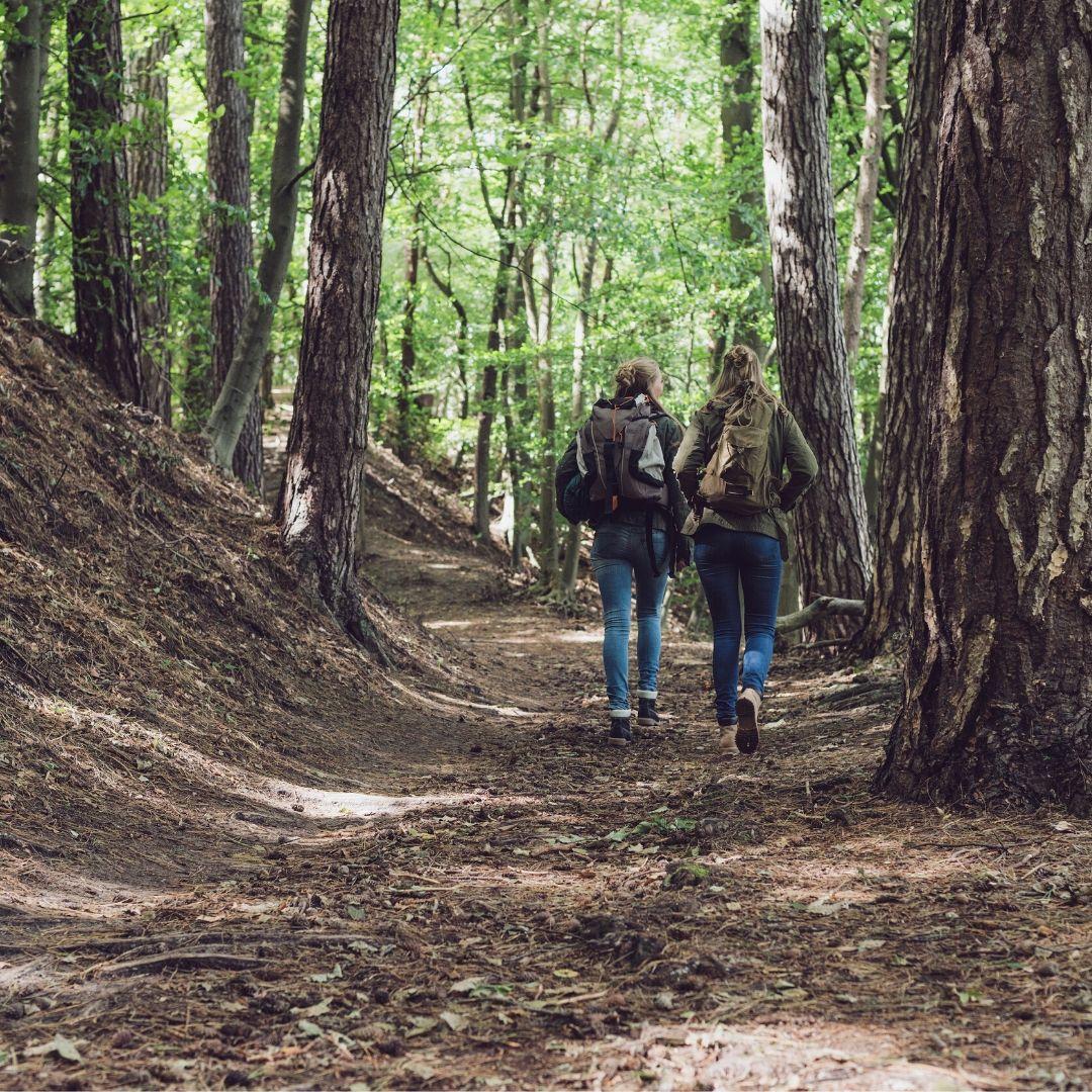 kvinnor i skogen