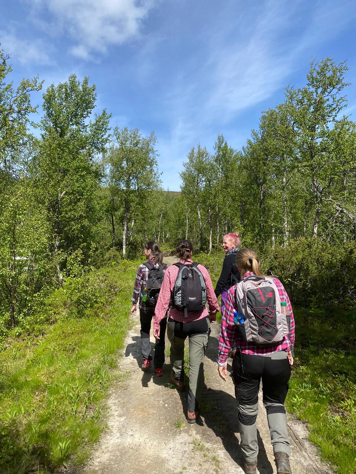 Retreat Ammarnäs, Lapland Sweden